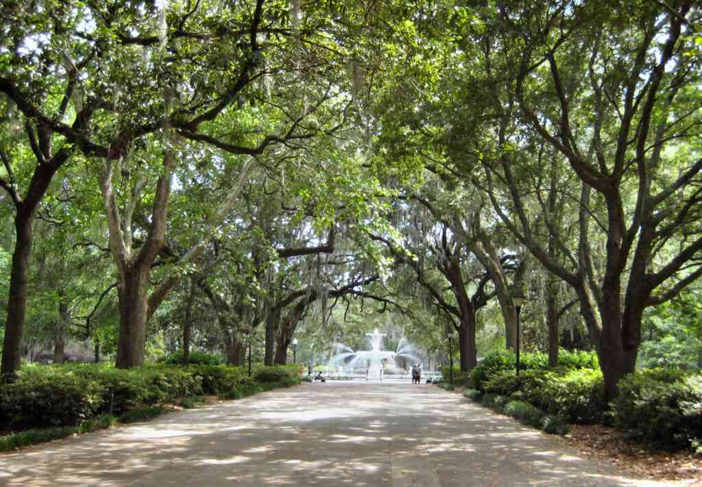 Forsyth Park is one of the best things to do in Charleston with kids