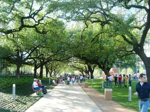 Discovery green park - Things to Do in Houston with Kids