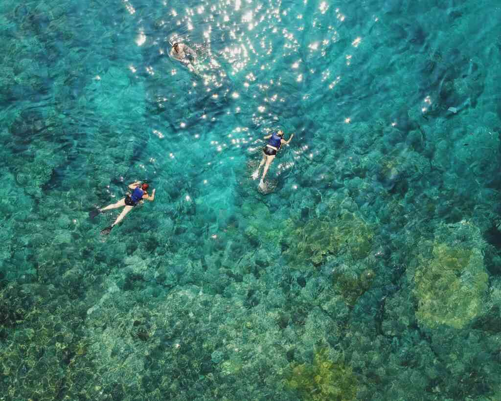Surfing and Snorkeling